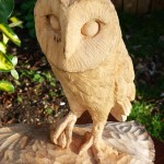 My first owl, carved in lime.