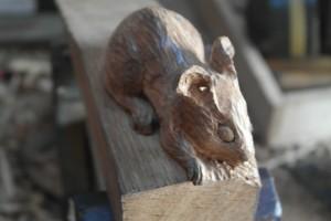 Oak mouse