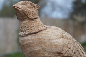 Pheasant wood carving